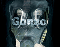 Gonzo music video campaign