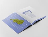 CBSO Brochure