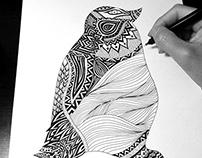 Penguin Detailed Illustration Process