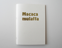 Goldsmiths - Macaca Mulatta