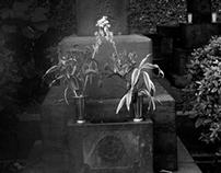 "Tokyo / Aoyama ""The Unforgotten"""