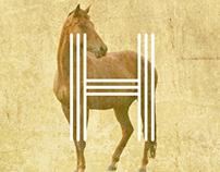 Villa Hipoaba - Centro Equestre