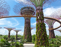 Supertrees Gardens By The Bay, Singapore