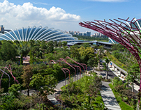 Main Gardens at Gardens By The Bay, Singapore