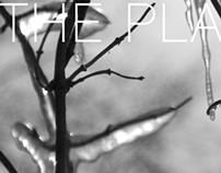 THE WINTER'S TALE Production Program Editorial Design
