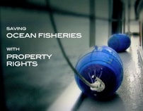 SHORT DOC: Saving Ocean Fisheries