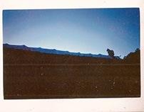 Yashica T4 prints