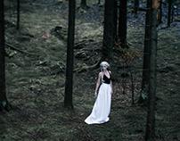White Wolf for Terra Urbana