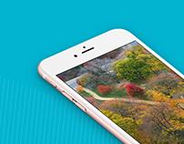 Slyde Photo Organizing App