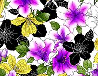 Botanicals by Pat Giancontieri