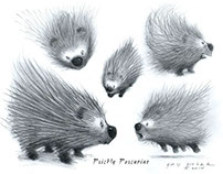 Prickly Porcupine
