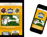 Sun Bowl Website