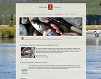 Tenkara Sensei Website