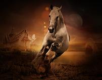 Horse photo manipülation / At manipülasyon...