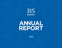 BlauStein Annual Report 2013
