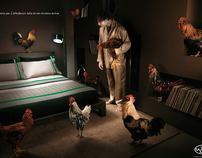 Fazzini print campaign - roosters