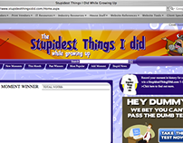 Stupidest Things I did Website
