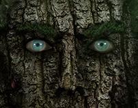 Wood Fella