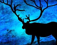 The deer at night ... Prints, Posters, Canvas