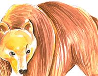 Watercolor Animals