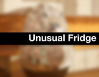 Unusual Fridge