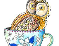 Antix . Hide Owl