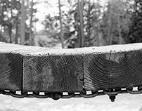 Black and White Film Photography