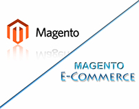 Flyer Boss Magento E-commerce