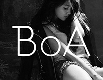 Concept Work - Redesign of BOA's website