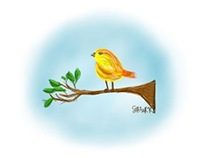 lil yellow bird