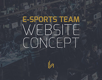 VH Gaming - Website Concept Design