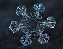 Snowflake macro photography