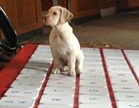 Budweiser Puppy Keyboard