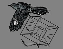 The Mocking Bird and the Tesseract