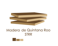 Branding MSQR
