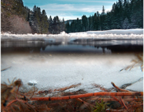 Northern California Winter 2013-14