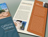 California Scenario Tri-Fold Brochure