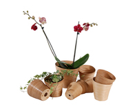 Flower Pots and Plant Pots