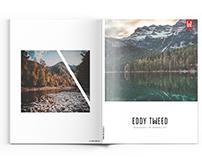 Eddy Tweed - Branding