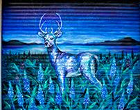 Deer in lavender garden for movie sunshine