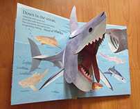 Animals Everywhere - Children's Wildlife Pop-up Book