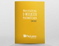 PayLane Brochure