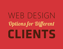 Web Design Options