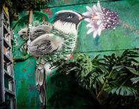 [Timelapse]: Graffiti Colibrí