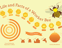 Worker Bee Infographic