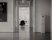 Vernunftsentpuppung (M. Schausberger/P. Kodym 2014)