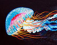 Nebula Jellyfish