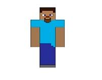 Steve (Minecraft) made with illustrator