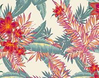 Alberta | Textile Design
