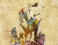 Bear on Mossy Rock